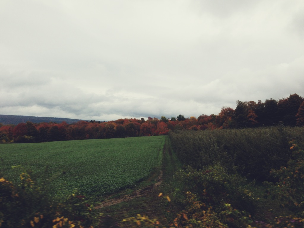 upstate new york countryside