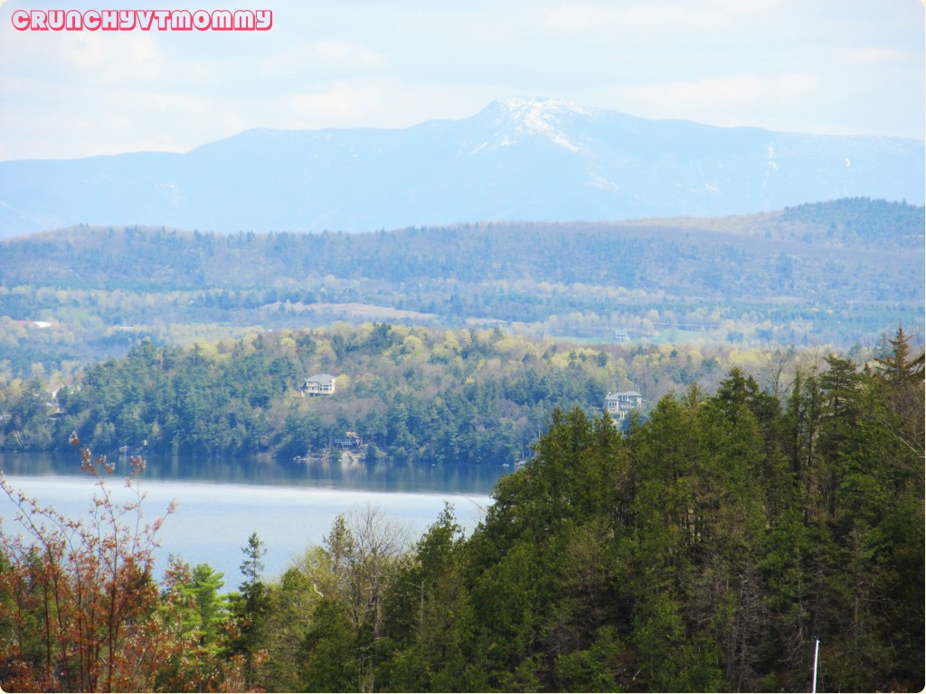 Vermont Spring II