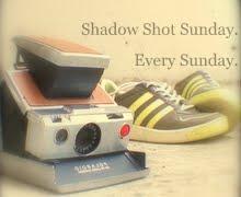 shadow shot sunday