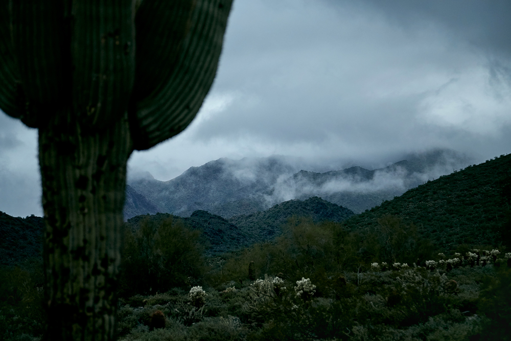 2015_Brandon-Tigrett_Scottsdale_IG-07_Retouched_WEB_Portfolio.jpg