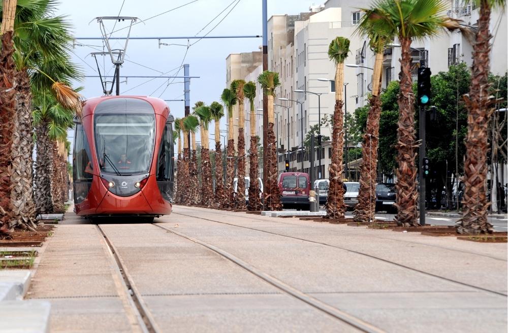 Kromě Alžírska nalezneme tramvaje Citadis také v dalším africkém státě - Maroku. Na snímku jsou vozy ve městě Casablanca. (foto: Alstom)