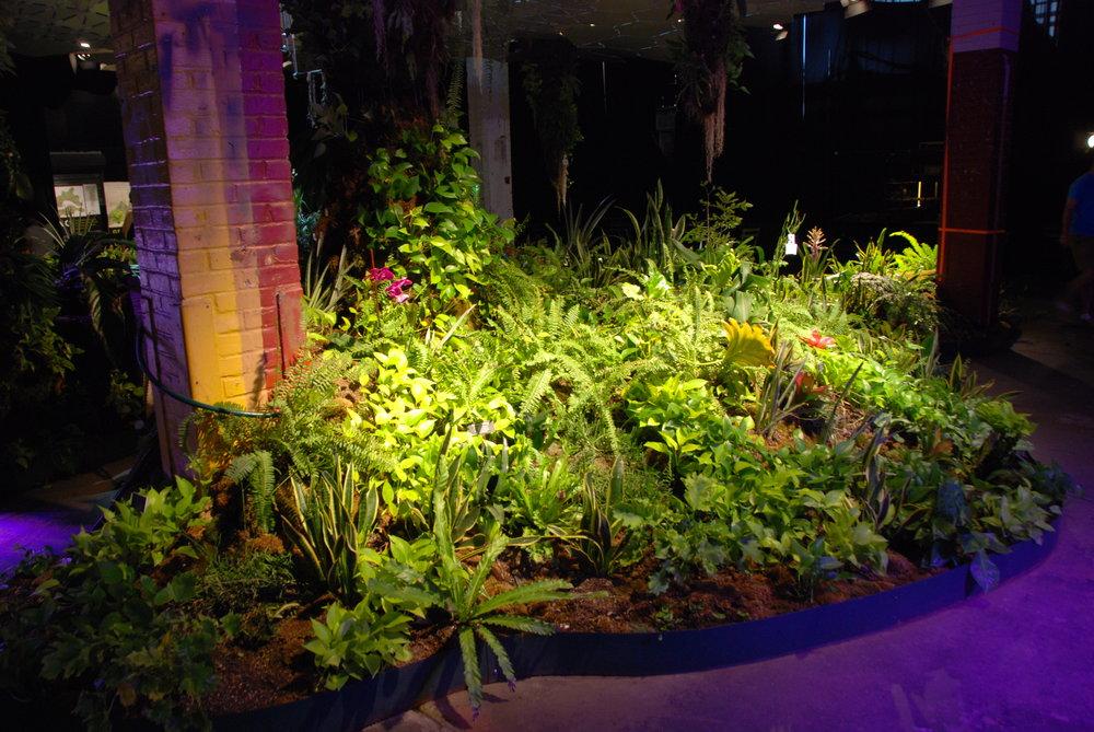 Ještě jeden pohled na zelenající se záhony v rámci Low Line Lab. (foto: Libor Hinčica)