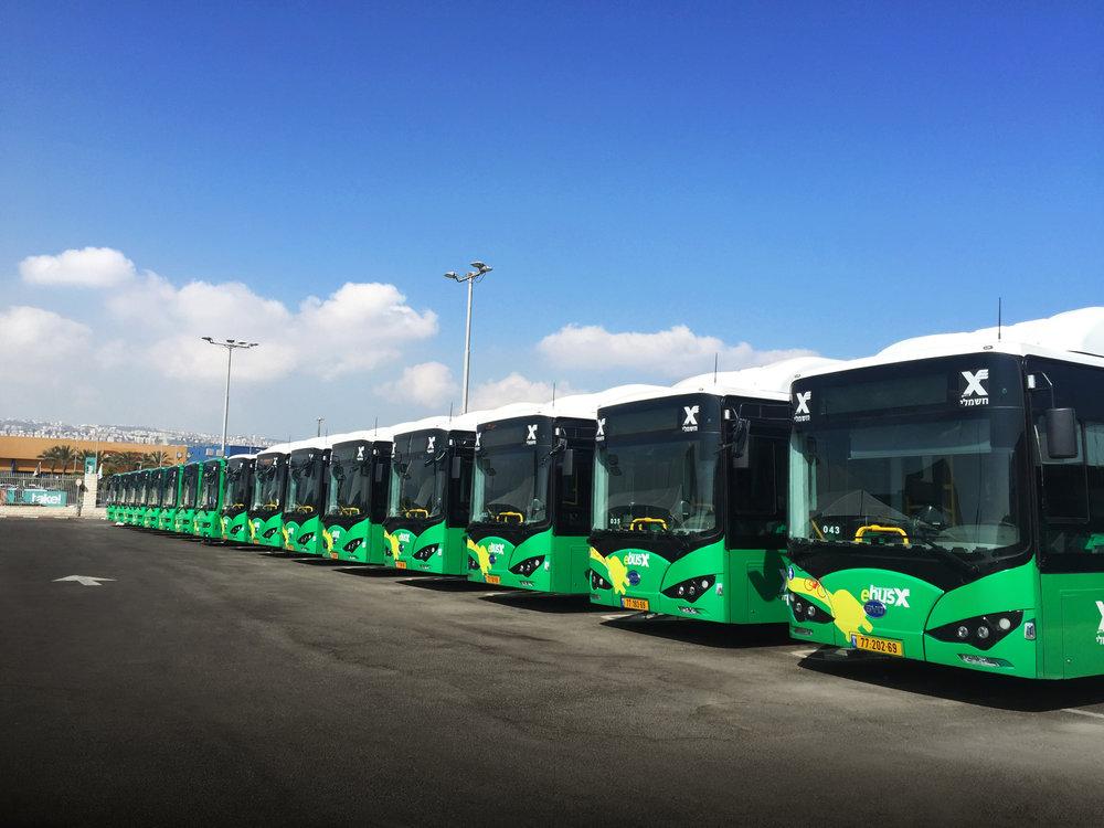 Elektrobusy BYD K9 pro izraelskou Haifu. (foto: BYD)