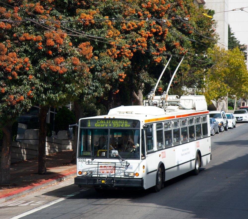 Trolejbus Škoda 14 TrSF. Připomeňme, že jméno českého výrobce se v USA ve spojitosti s vozidly obvykle nepoužívá a že úloha českého dodavatele byla již v době realizace zakázky z pochopitelných důvodů poněkud upozaděna.(zdroj: Wikipedia.org)