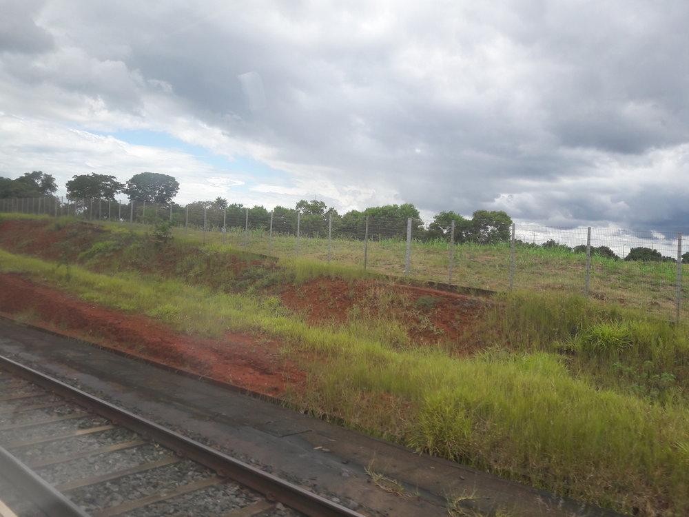 Pohled z vlaku na sdílené trati.