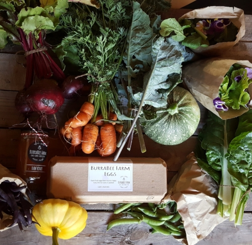 Example:  BurraBee Farm CSA Membership - Four person family