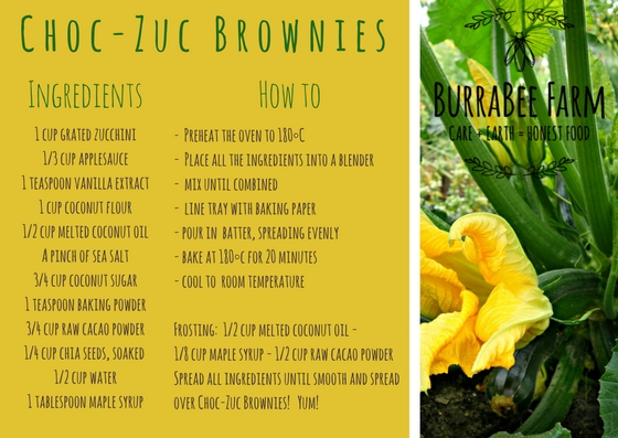 BurraBee Farm Choc-Zuc Brownies.jpg
