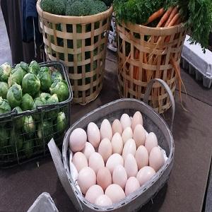 BurraBee Farm Fresh Produce 1.jpg