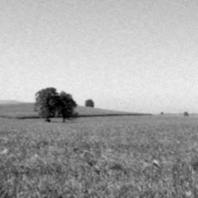 Landschaft01.jpg