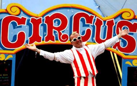 stevekaos_circus2.jpg