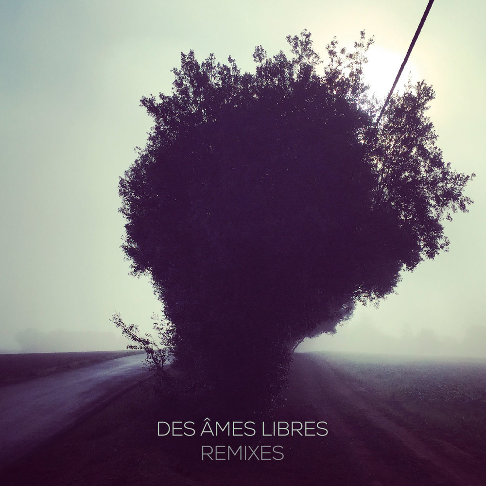 008 DAL Remixes