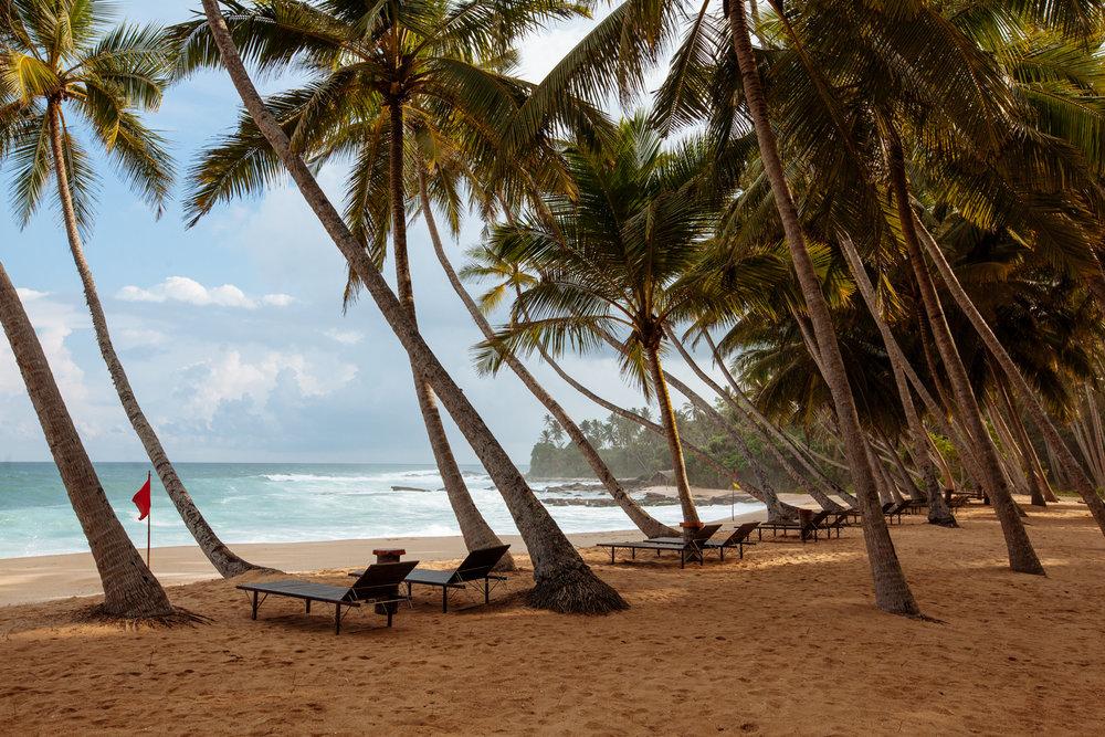 Sri Lanka - Tim Grey-195.jpg