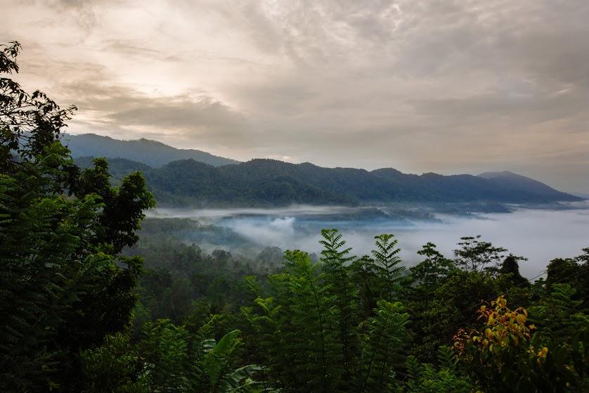 Sri Lanka - Ahinsa - Tim Grey-40.jpg