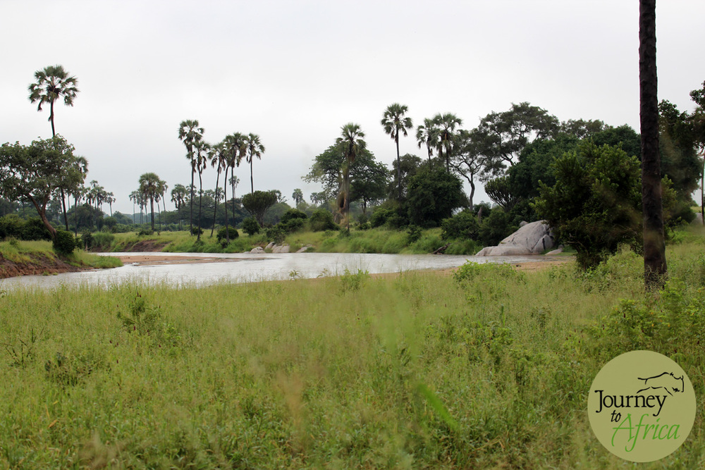 Mdonya River.