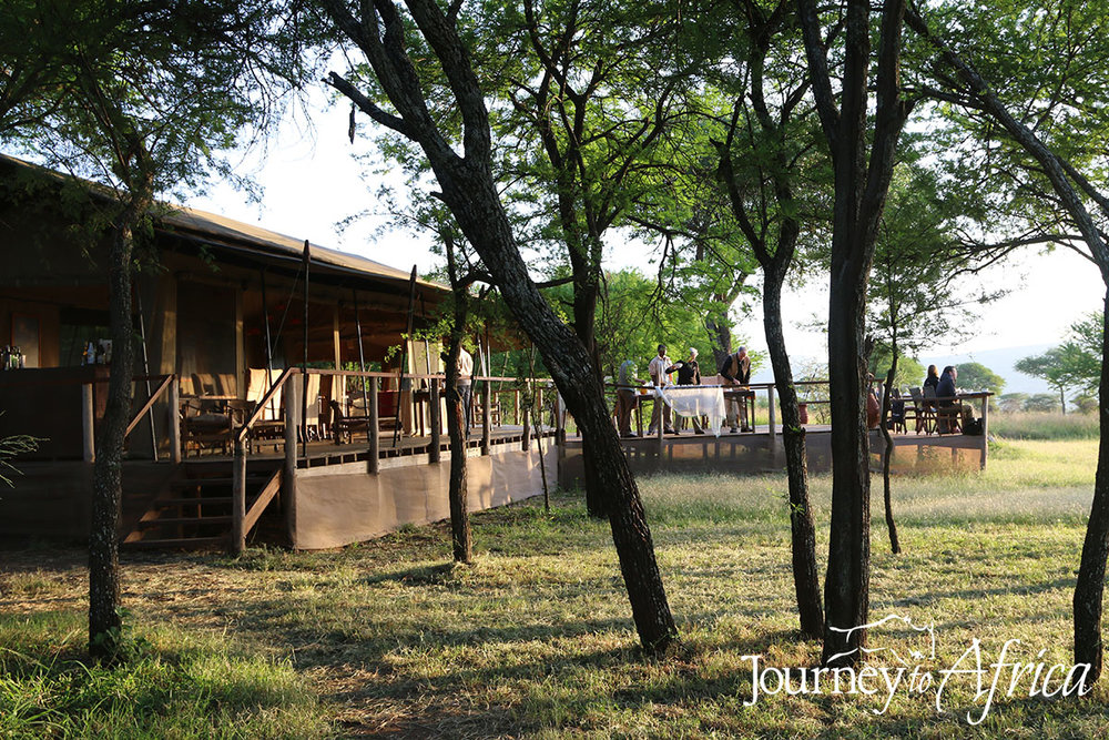 Dunia Camp, Serengeti, Tanzania