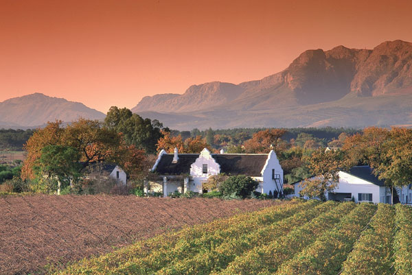 SOUTH AFRICA  Start in Cape Town, drink your way through the wine country and finish on Safari. Perfect!