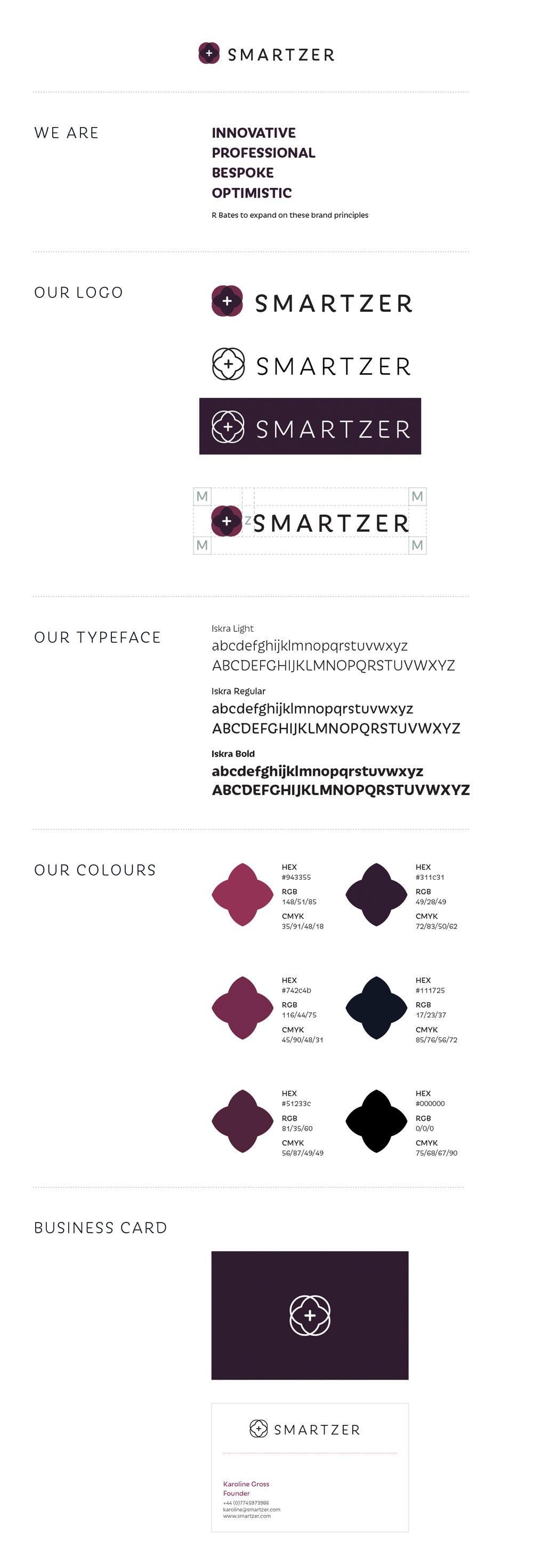 smartzer1.jpg
