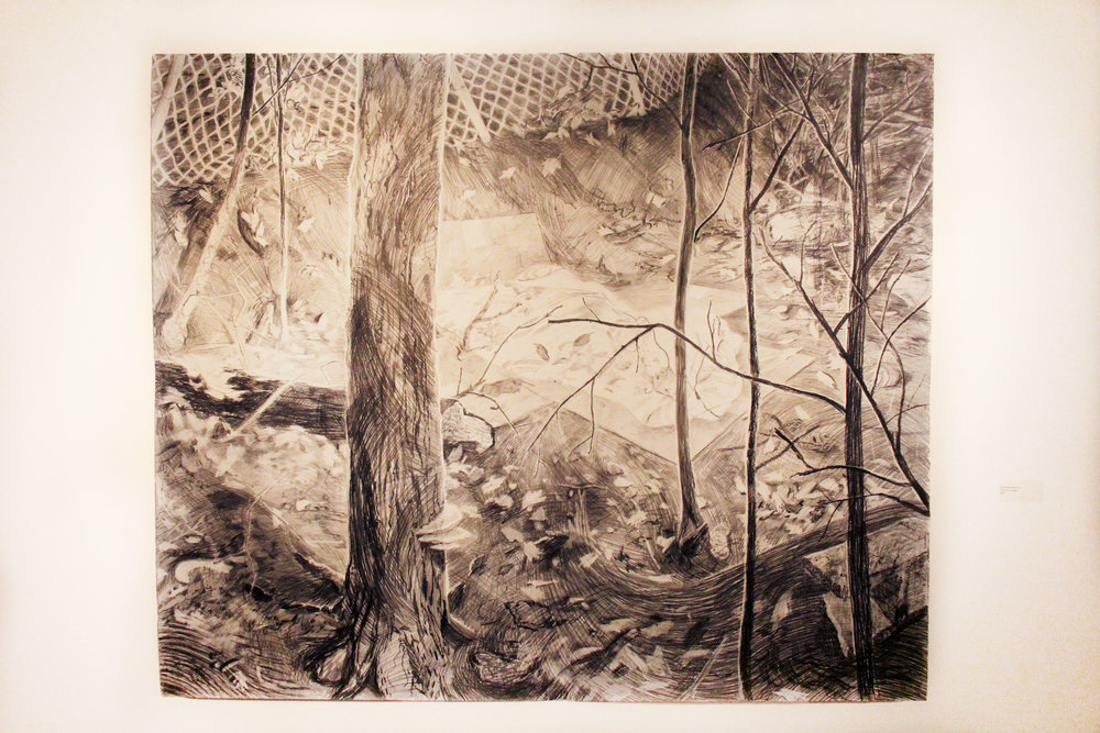 Beyond Rachel's Yard;  Graphite on paper; 2010