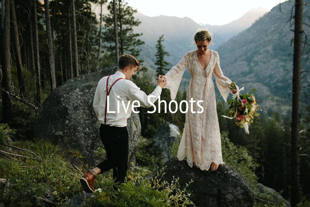 Live Shoots.jpg