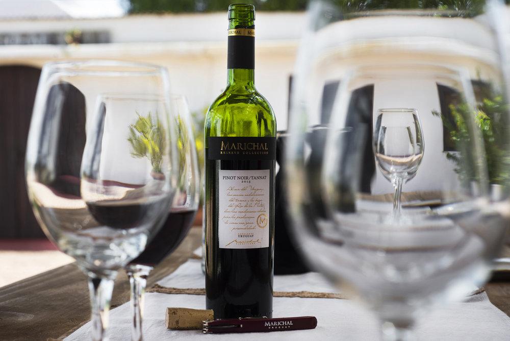 Degustación 5 vinos + empanaditas - Nada mejor que sentirte como en casa, como te vas a sentir en Bodega Marichal acompañando 5 buenos vinos con empanaditas caseras.- Base mínima 2 personas- 30USD por persona- No incluye transporte