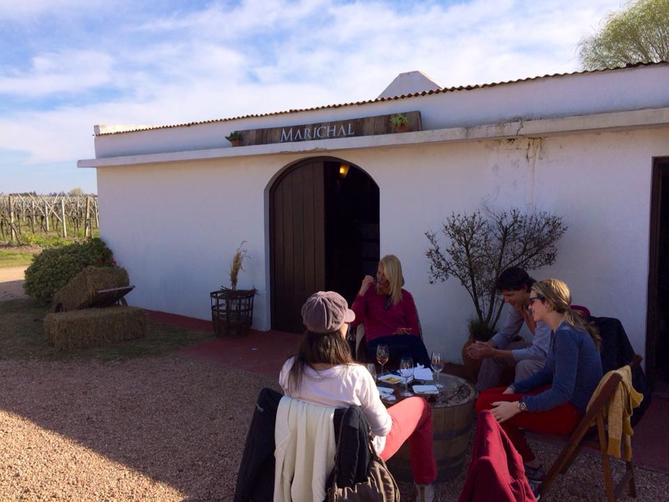 Tour Bodegas Boutique - En este recorrido degustaras etiquetas de producción limitada de 3 bodegas de la zona de Canelones. Una excelente oportunidad para adentrarse en la cultura del vino uruguayo en un recorrido muy divertido que incluye almuerzo casero en una bodega.Esta experiencia incluye: degustación en Bodega Filgueira y Bodega Artesana +Almuerzo en Bodega MarichalIncluye traslado desde tu casa u hotel en Montevideo.- Base mínima: 2 personas- 196USD por persona