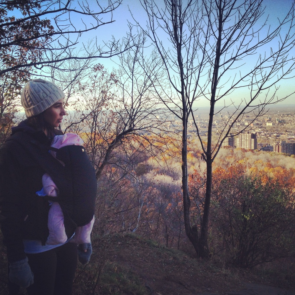 Winter walking, hiking and foraging with my newborn daughter on Mont Royal, Montreal, QC.