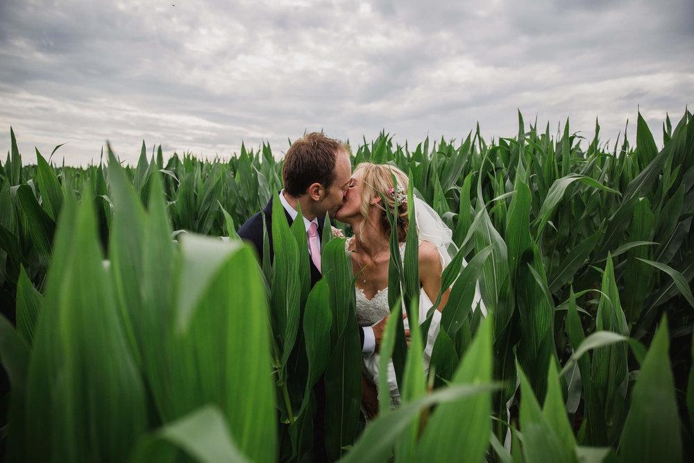 bride-and-groom-kissing-in-cornfield-lookbook.jpg