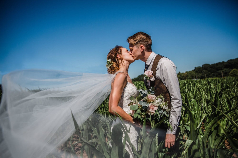 newly married couple kissing in cornfield