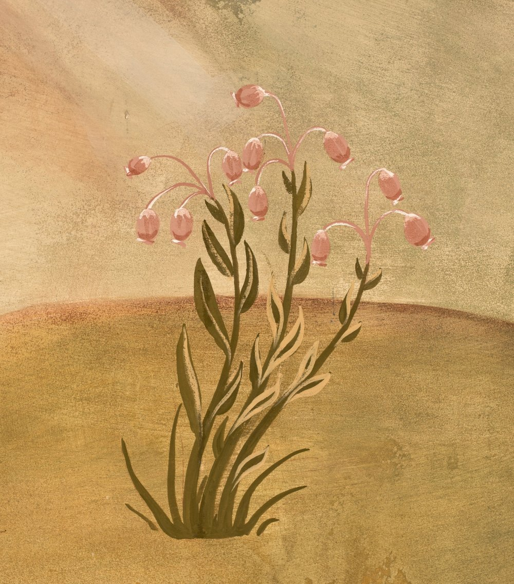 Bog Rosemary