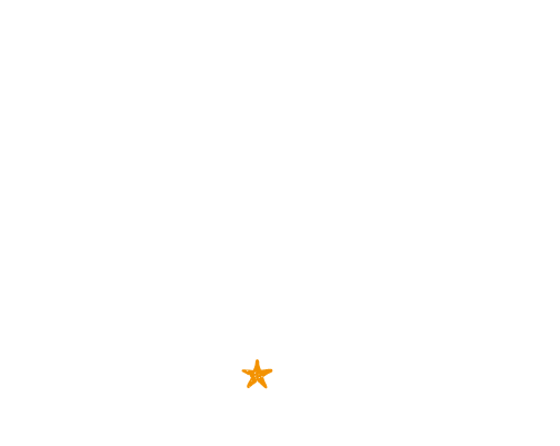 Brand New Groove