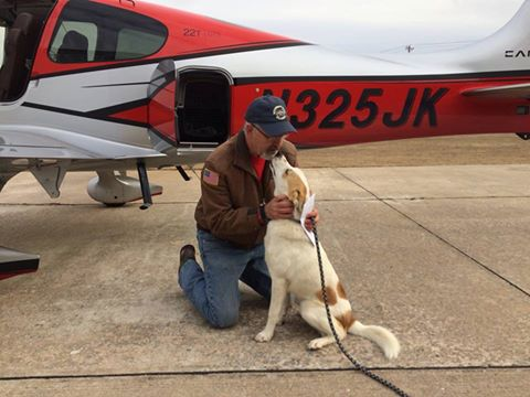 Special service dog in route to Indy