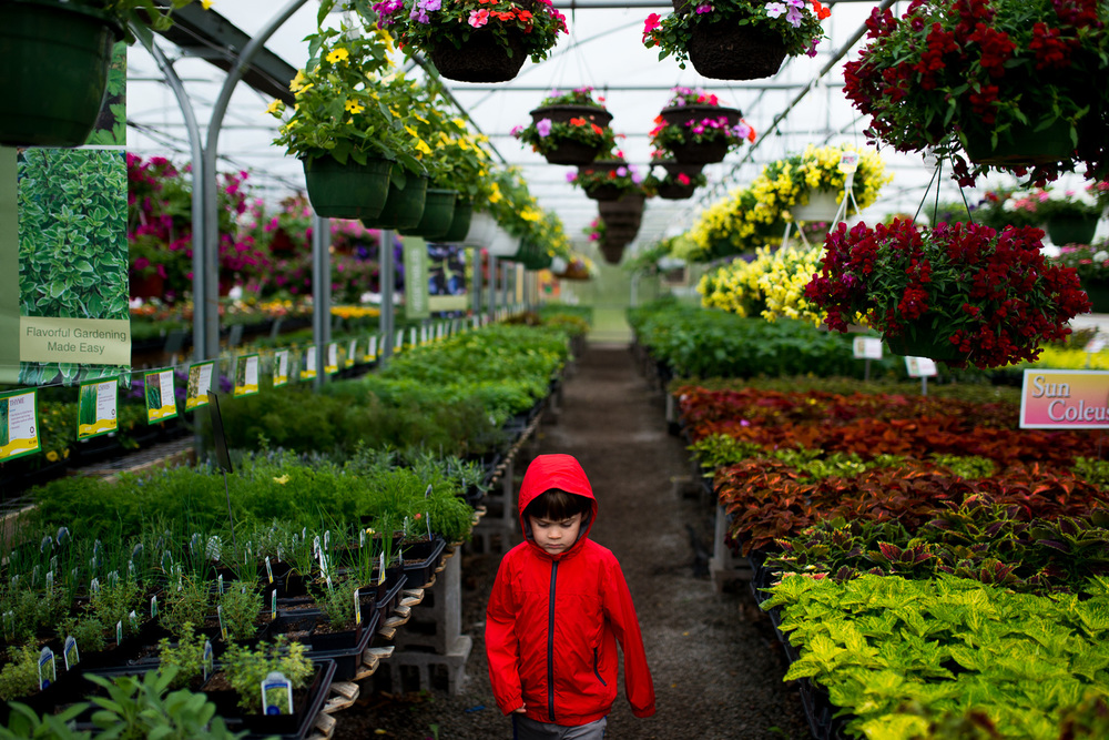 greensburg pa photographer boy in greenhouse