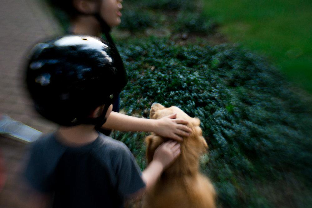 little-story-studio-greensburg-photographer-6.jpg