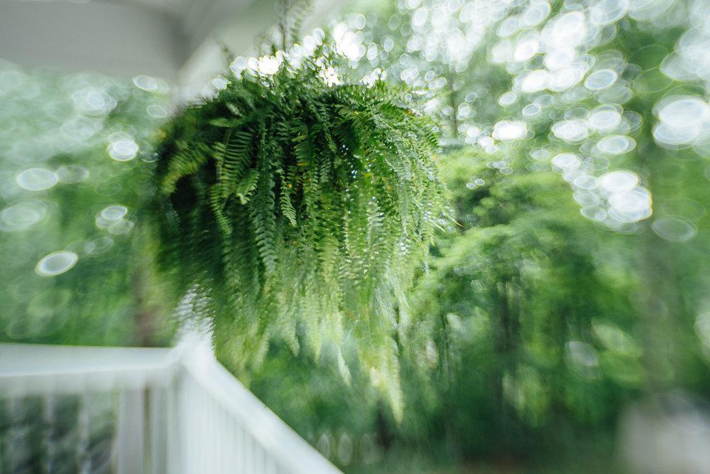 little-story-studio-greensburg-photographer-8.jpg