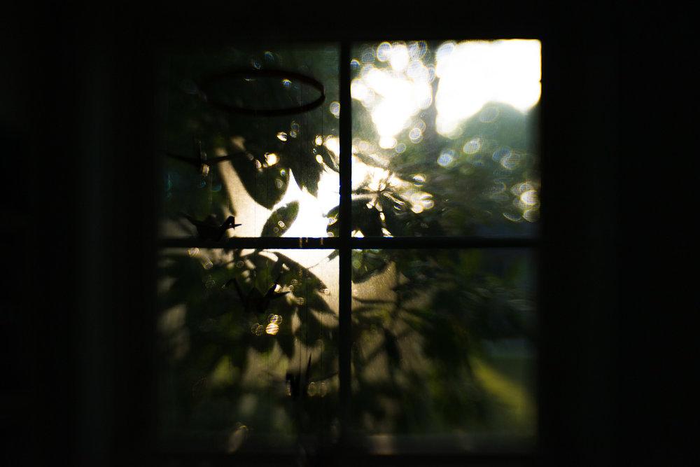 little-story-studio-greensburg-photographer-23.jpg