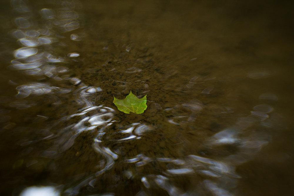 little-story-studio-greensburg-photographer-15.jpg