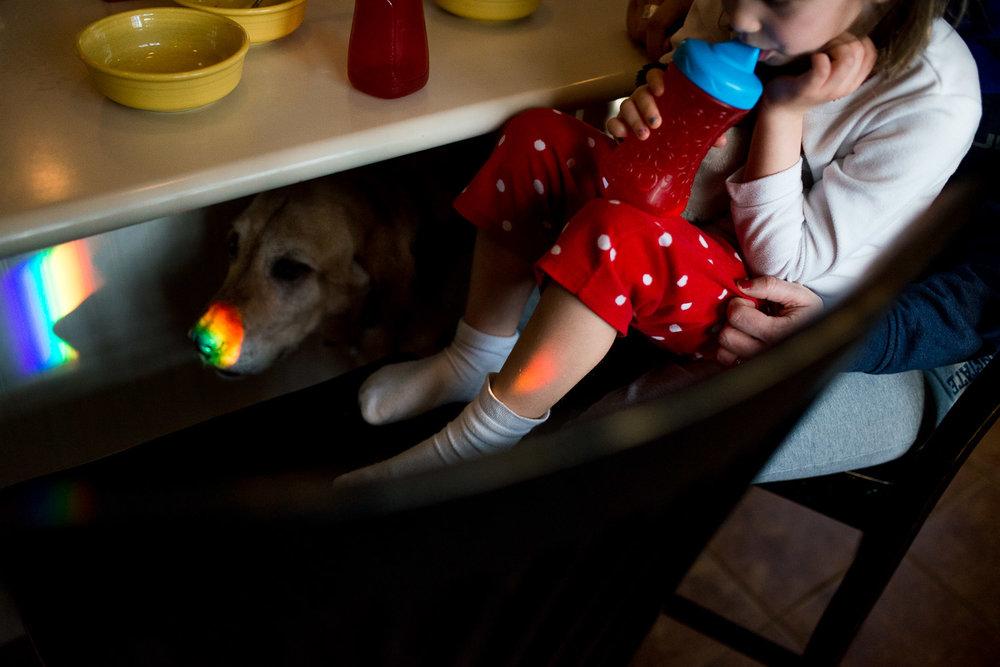 pittsburgh-family-photographer-67.jpg