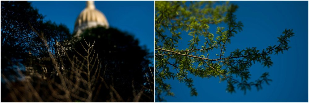 pittsburgh-family-photographer-132.jpg
