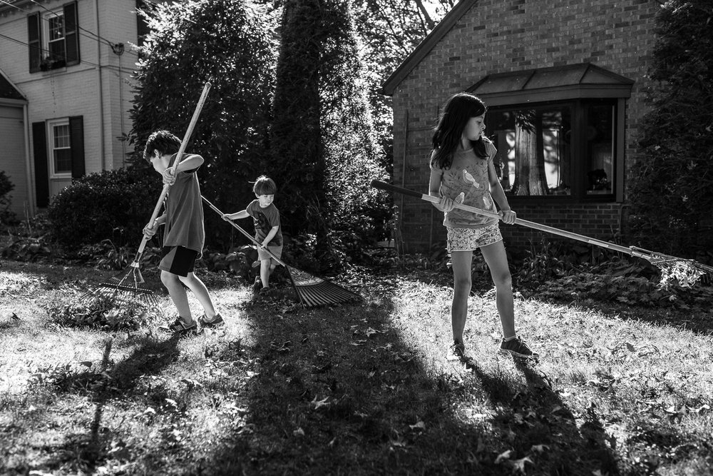 I like the varied directions of diagonal lines made by the rakes in this shot. I don't like that there is no breathing room between the edge of the frame and the third child's rake. (Also, more intersection!) -