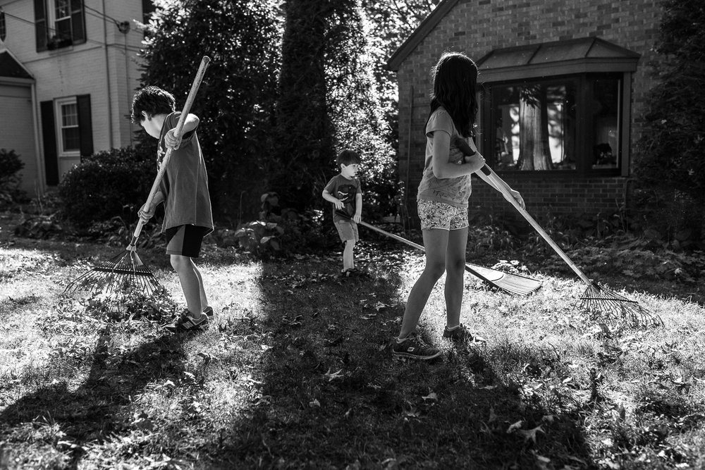 The third child is dividing the middle rake almost directly in half. A division this dramatic is the first and last thing our eyes study as we try to make sense of it.  -