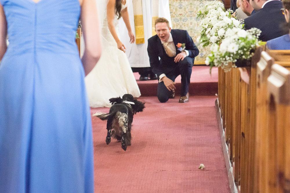 Hannah and Will 221 boringdon hall wedding.jpg