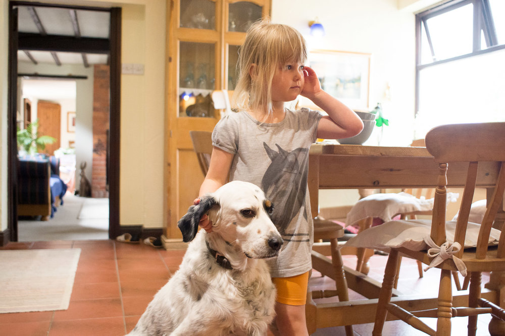 little girl and dog in the cottage at wedding yurts wedding in leicestershire