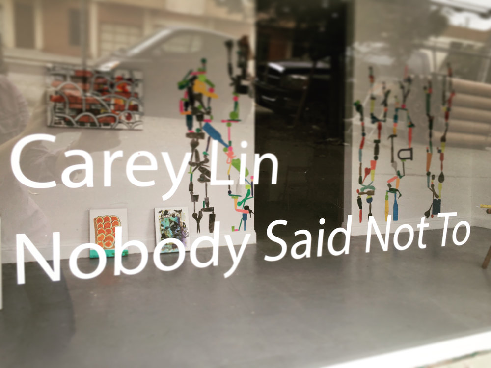 Carey Lin, Nobody Said Not To, image courtesy Irving Street Projects