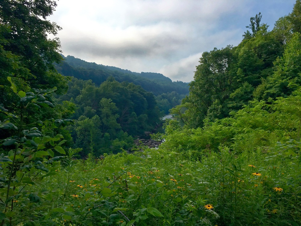 This view was pointed out by a cycling companion (pictured below) who joined me for about 20 miles in the morning on the way into Ohiopyle (yes, that really is the name of the town), where I enjoyed a terrific breakfast buffet at the Market Cafe.