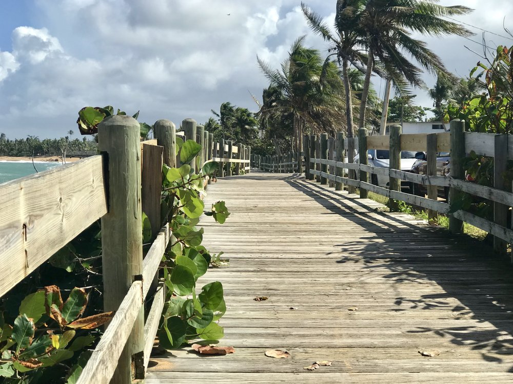 The coastal area east of the San Juan airport is known for a 12 kilometer designated bike path that follows along the beach and into an adjoining rain forest on asphalt, sand and extended sections of a timber bridge.