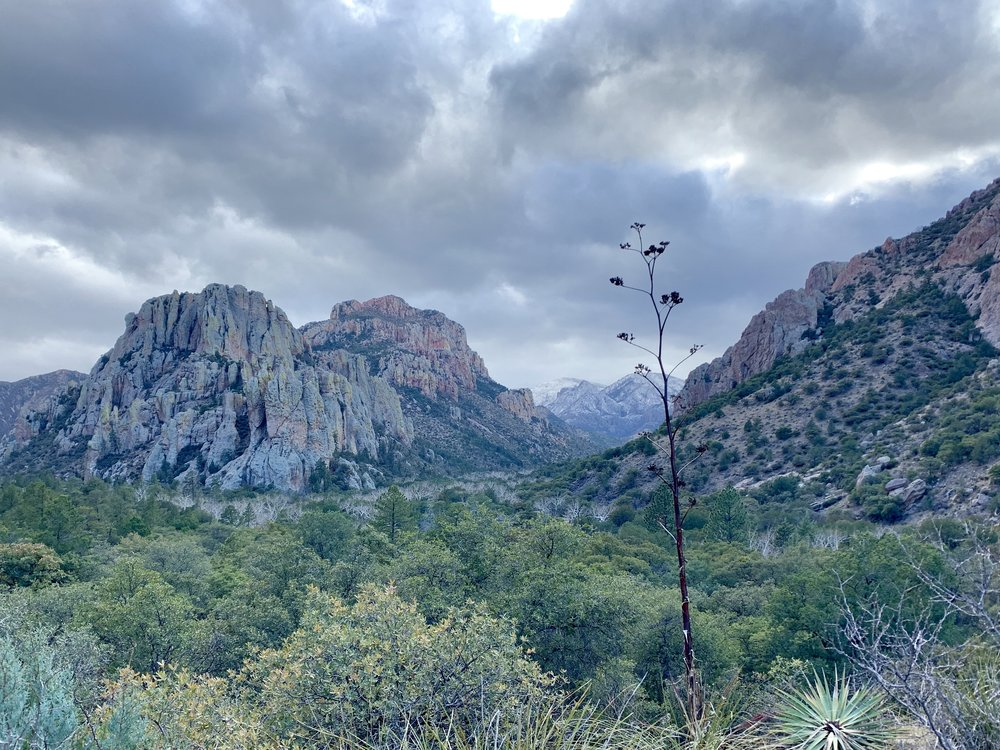 Another view at Cave Creek looking west.