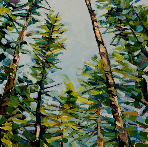 tree_tops.jpg