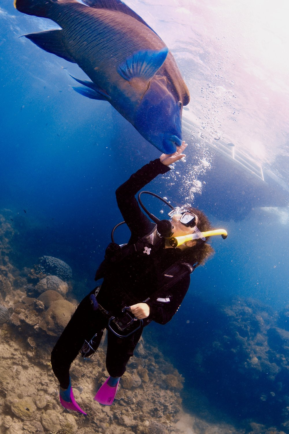 This is me and Wally. We met at the Great Barrier Reef. He left me shortly thereafter. I may never love again.