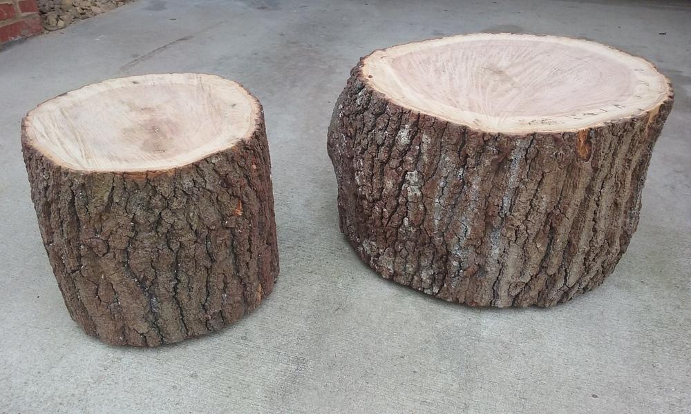 trunks.tops.jpg