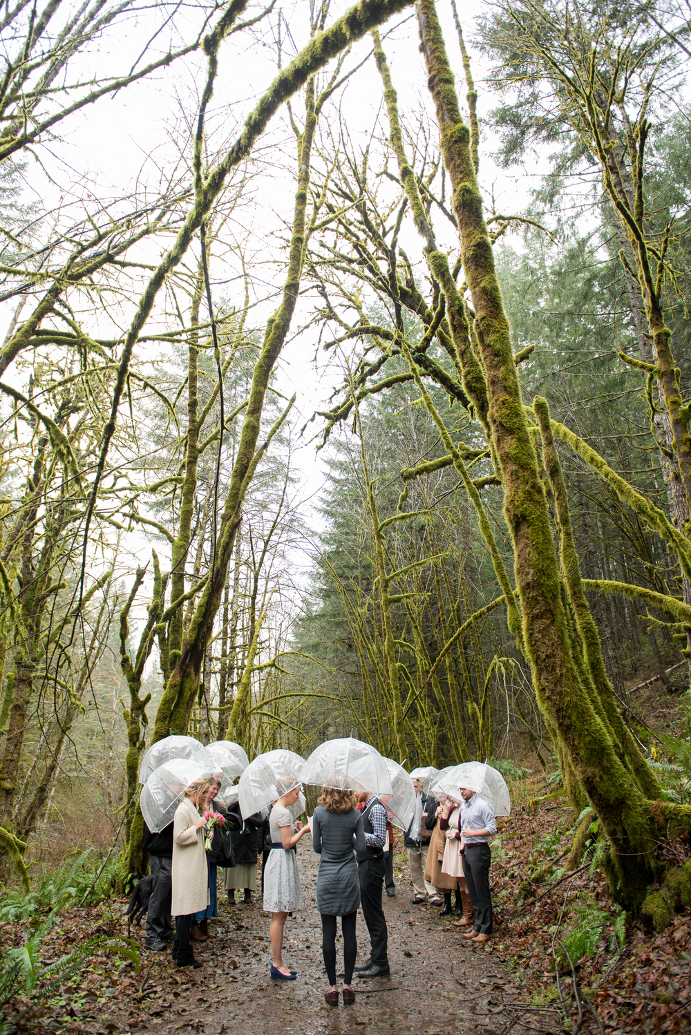 17-beazell-memorial-forest-intimate-outdoor-oregon-wedding.jpg